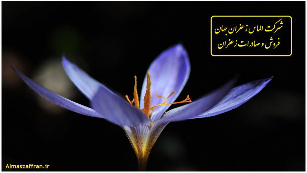 Sales details of different types of saffron