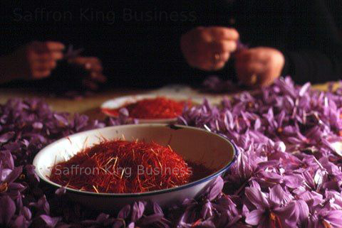 Does saffron lower blood pressure?