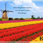 Major saffron sale in the Netherlands